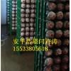 食用菌工厂化网格