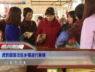 临川虎奶菇首次在乡镇展销