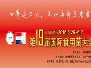 第十九届国际蘑菇学会大会