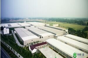 华绿生物靠卖金针菇营业收入超2.4亿