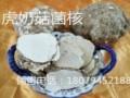 枇杷雪梨虎奶汤