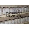 江西抚州 临川虎奶菇栽培种
